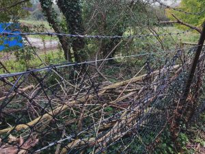 Barbed wire boundary at a Primary School